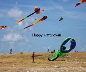 makar sankranti Forest Kites Nice images Download