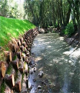 Recuperación de márgenes de río con muro Krainer