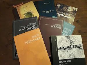 Mis libritos