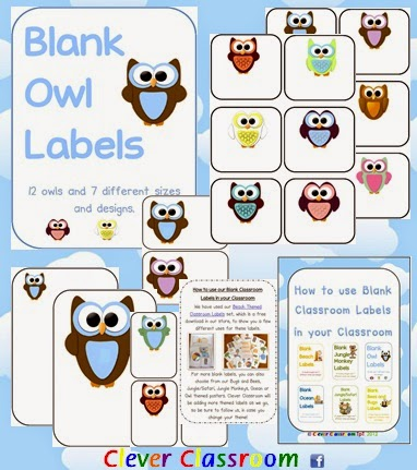Owl Themed Blank Classroom Labels