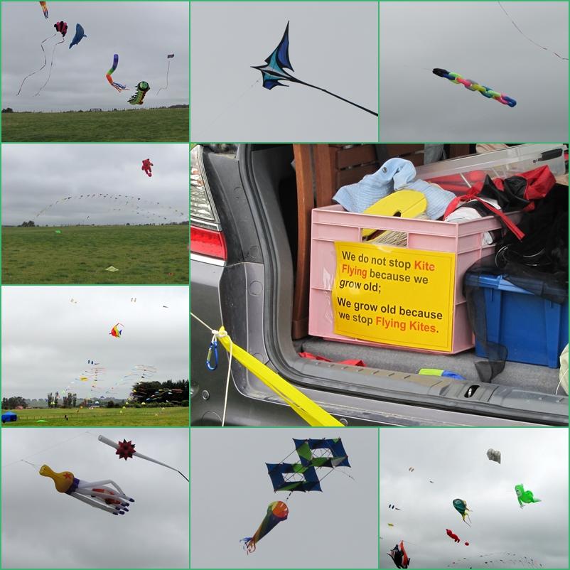 kites-new-zealand