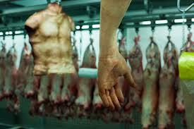venta de carne humana a la venta