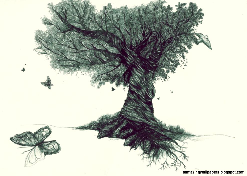 Tree Drawing Tumblr Amazing Wallpapers