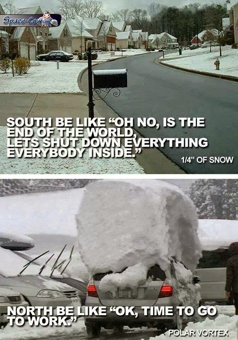 funny things snow picture