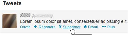 capture d'écran Web - Twitter