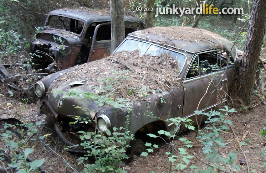 Car Hunting Season Begins Dig Into The Woods For Classic Abandoned Cars 1933 Ford 1951 Victoria