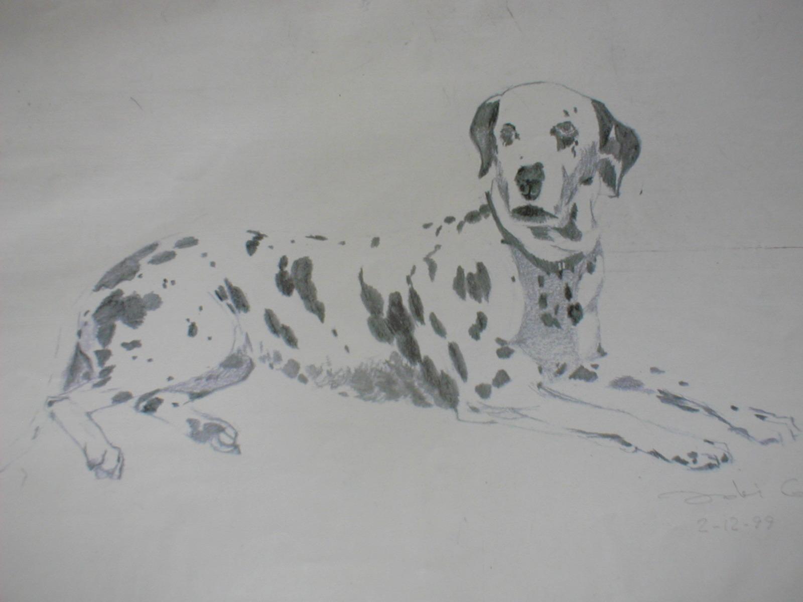 dibujos de animales a lapiz imagui MEMES Pictures