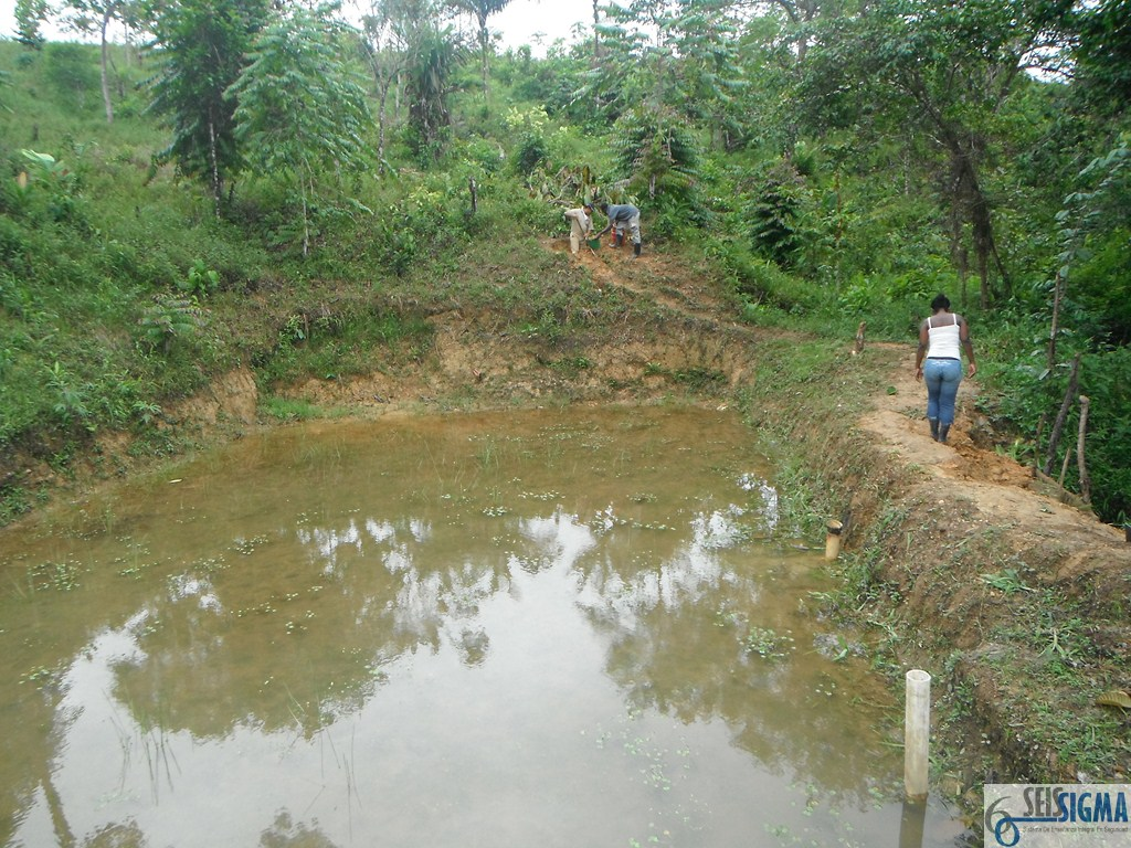 Cultivo De Tilapias Y Cachama En Estanques En Aguas