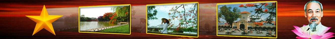 Việt Nam mới