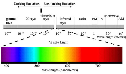 NIRNSA (Niigata Independent Radio Nuclide Survey and Analysis ...