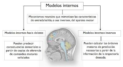 Modelos internos