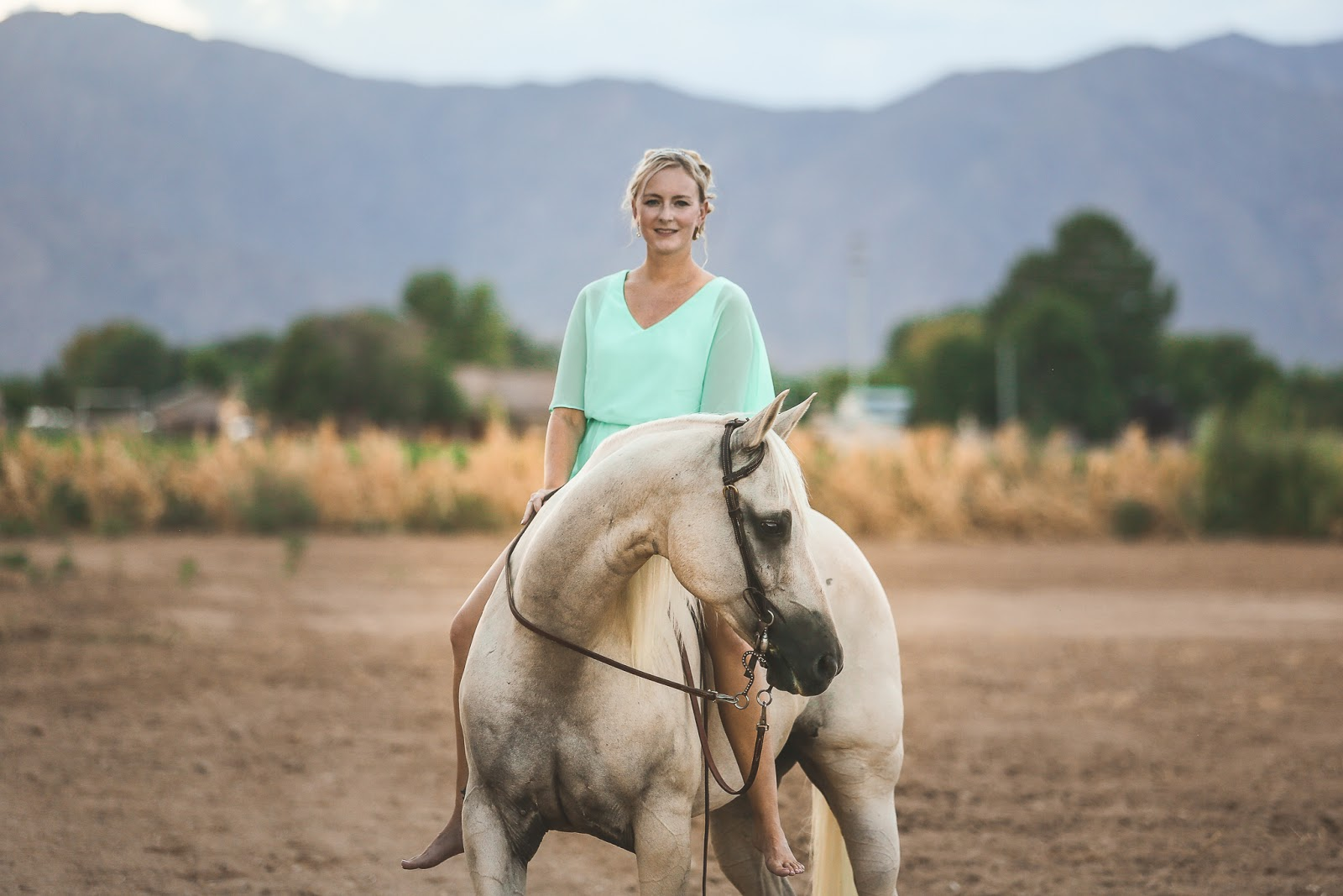 A and j equine photography Equine Applied and Clinical Nutrition - Elsevieron