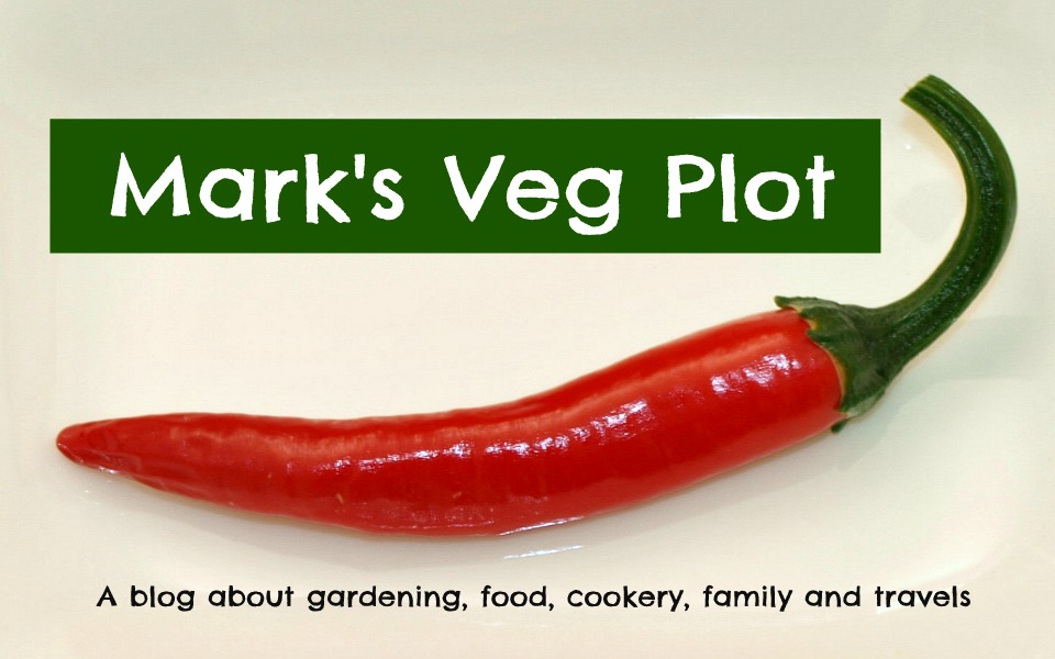 Mark&#39;s Veg Plot