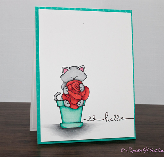 Kitty hugging rose card by Cynde Whitlow | Stamps by Newton's Nook Designs #newtonsnook