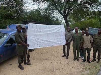 Marjo meldt via de telefoon dat de rangers vandaag in staking zijn. Dat is een ongebruikelijke actie voor Krugermedewerkers.