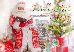 Felices Fiestas mis queridos amigos¡