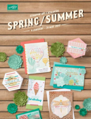 2017 Spring /Summer