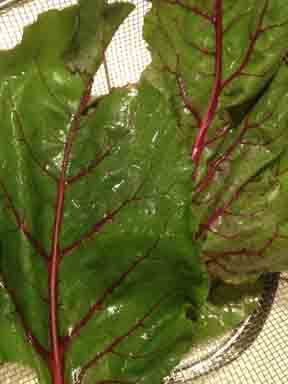 Beet greens washed and trimmed
