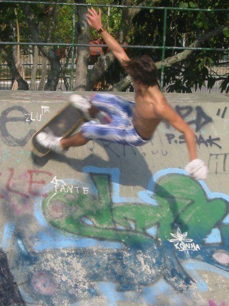 Fake Meninos   Skate