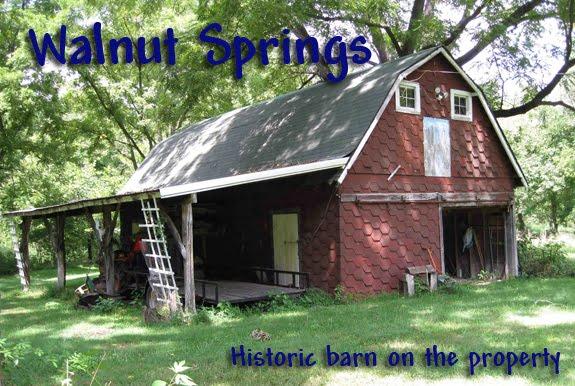 Walnut Springs Construction