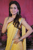 Aksha pardasany latest hot pics-thumbnail-13