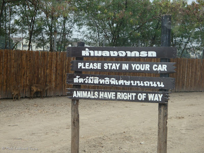 Safari World - Safari Park Bangkok Batch 3 Photo 4