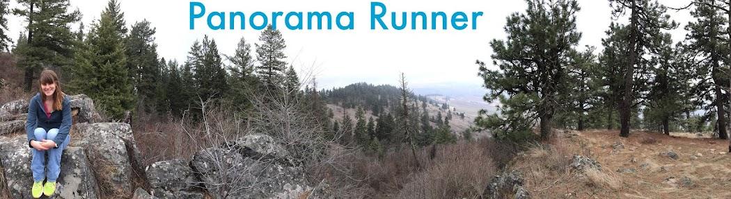 Panorama Runner