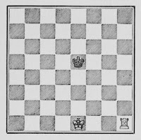 Simple Chess Rook Checkmate