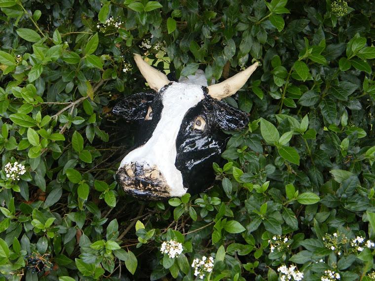 tête de vache en grès* dans laurier tin