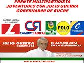 COALICIÓN MULTIPARTIDISTA: EL POLO DEMOCRÁTICO