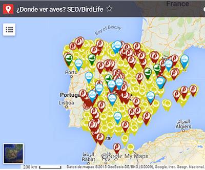 SEO Bird Life reúne en un mapa información anturalista