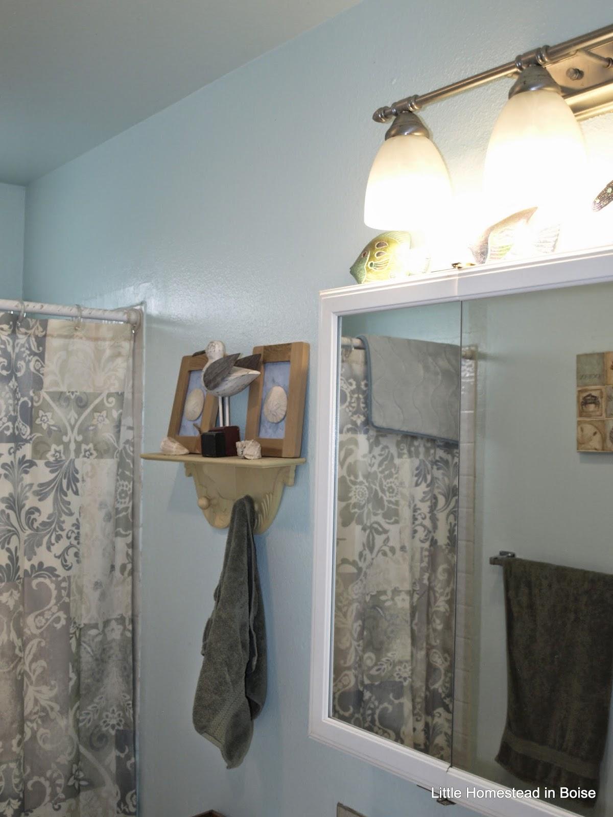 Little Homestead in Boise Bathroom Remodel Starts Day 1