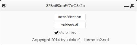 metin2 multihack injector