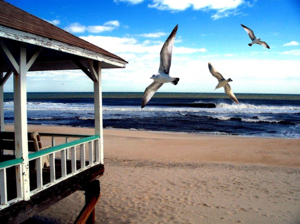 Beach Life Hd Wallpaper