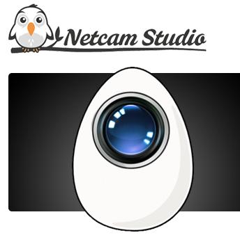 برنامج المراقبة بالكاميرا المتطور Netcam