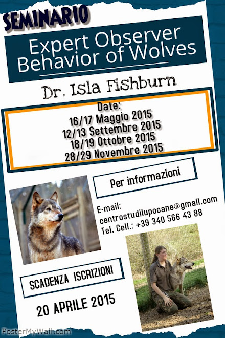 Corso: EXPERT OBSERVER BEHAVIOR OF WOLVES