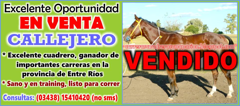 CALLEJERO - VENTA - 20.04.2015