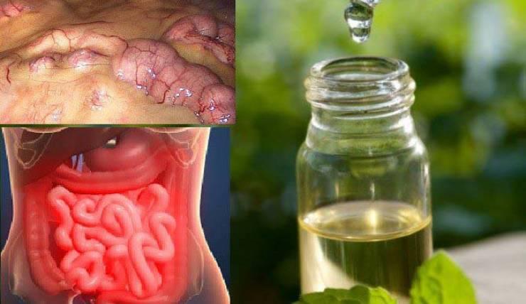 تخلصوا من كل السموم في جسمكم في 3 أيام بفضل هذه الطريقة الرائعة