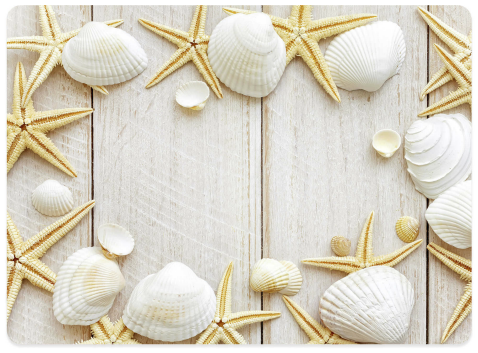Shell Photo Placemats