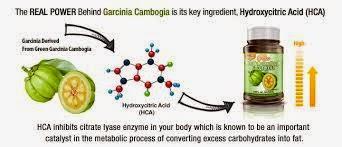 Dr. Oz: Garcinia-Cambogia-Food