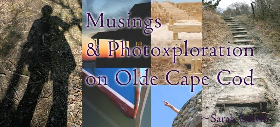 Musings and Photoxploration from Olde Cape Cod