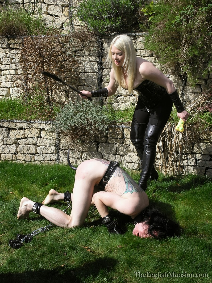 Bdsm sub dominated by male and females 9
