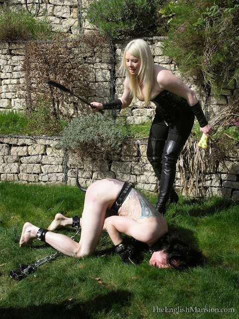 slave pet puppy training femdom punish whip