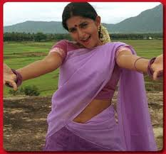Meera-Jasmine-hot-in-saree-4