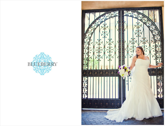 Lafayette park hotel wedding photography beautiful bride