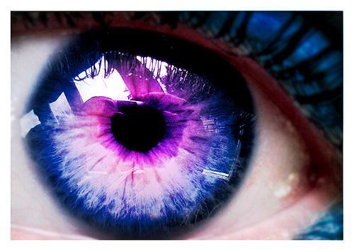 Le Elementales -The Elementals-  Purple-eyes-eyes-7648017-500-355