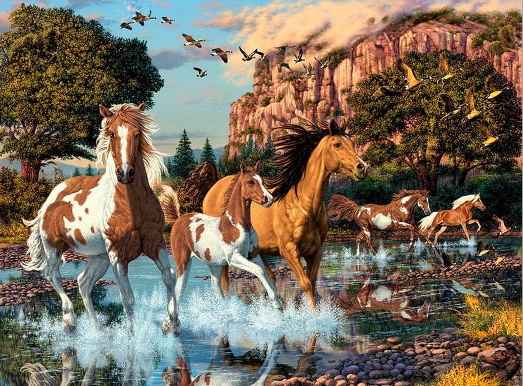 cuadros-de-caballos-corriendo-en-el-campo