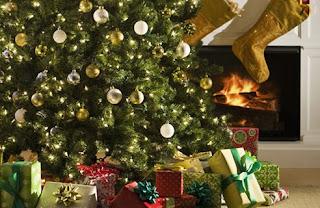 presentes embaixo de árvore de natal