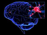 6 Hal Yang Akan Meningkatkan Memori Dan Kekuatan Otak.