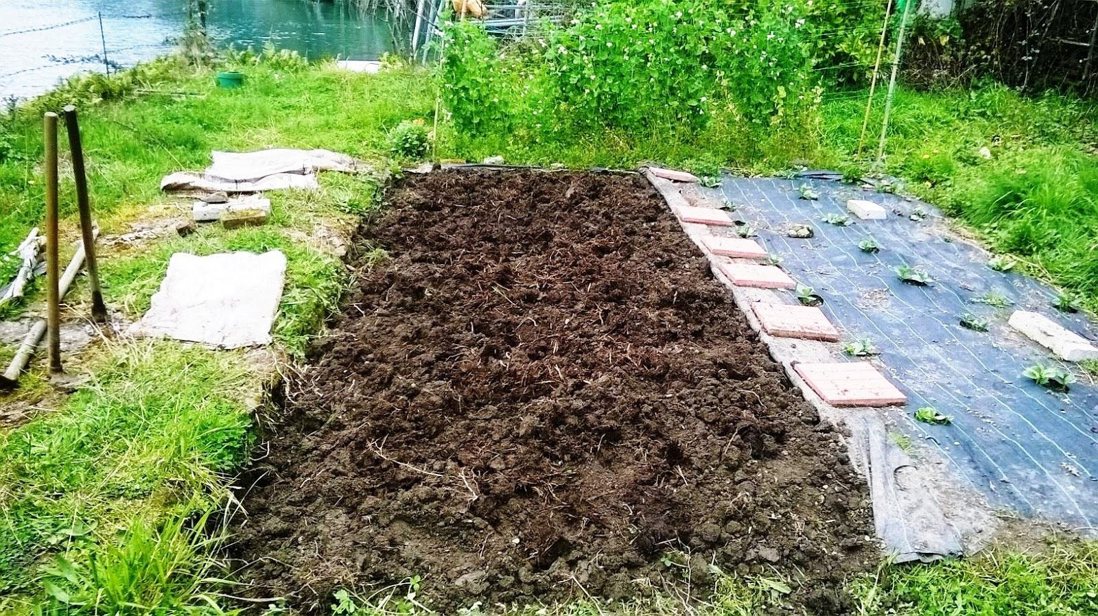 Molinillo de caf trabajo y abono de la tierra - Preparacion de la tierra para sembrar ...